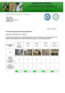 Abklatschprobe Thermostar 1_Seite_1